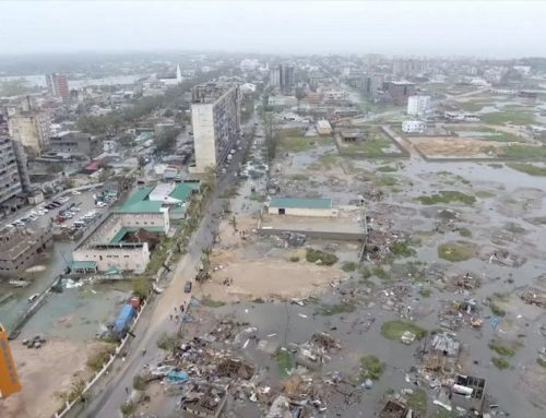 MOZAMBIQUE: Disaster recovery underway